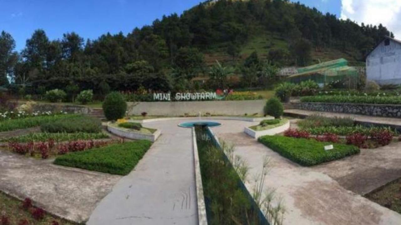Mini Showfarm Bantaeng Website Profil Desa Kayu Loe